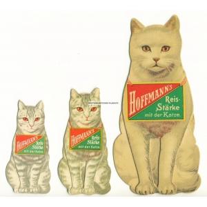 Hoffmann's Reisstärke - 3 Katzen / 3 Cats / 3 Chats