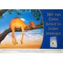 Camel Mit ner Camel kannst Du locker abhängen (WK 06990)